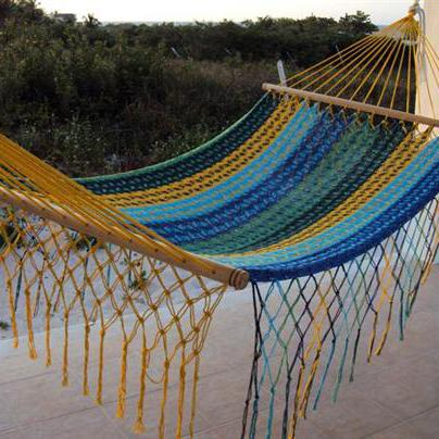 Colorful double Hammock